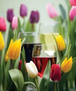 Tulips and wine