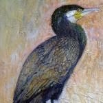 Cormorant on a Post by Sue Nichol