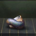 Lone Shell by Paul Czainski