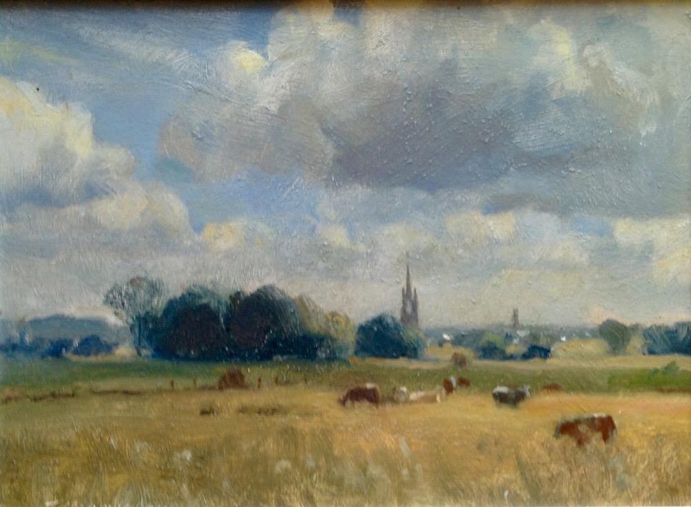 Marsh Cattle, Faversham by Trevor Chamberlain