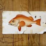 Orange Fish by Paul Czainski