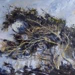 Wind-sculpted Hawthorn by Sue Nichol